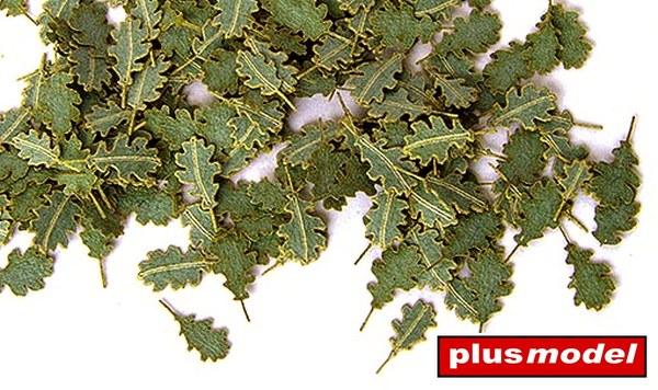 Zelené listí - dub