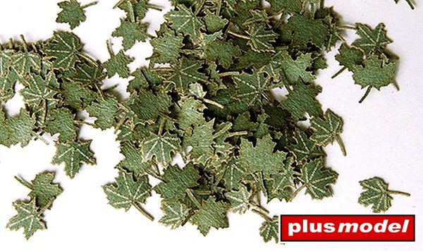 Zelené listí - javor
